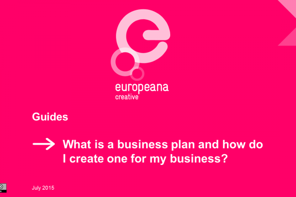 Guide 4 - The Business Plan